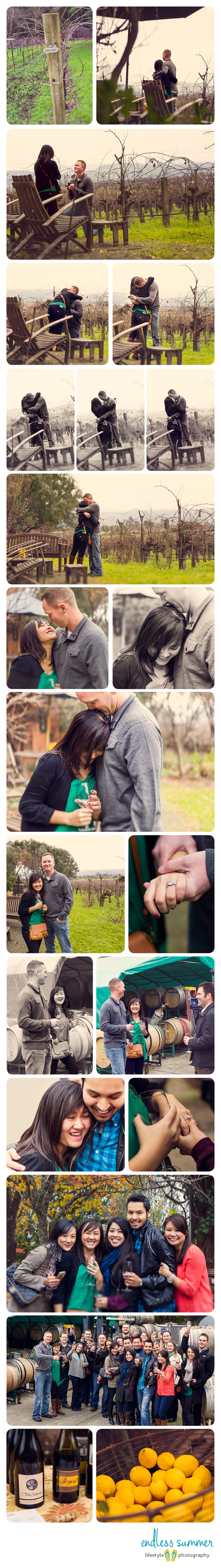 Napa Valley Proposal Photography